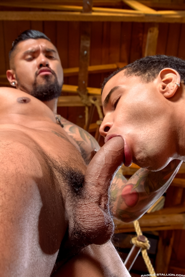 Boomer Banks and Trelino Raging Stallion gay porn stars gay streaming porn movies gay video on demand gay vod premium gay sites 002 male tube red tube gallery photo - Boomer Banks and Trelino