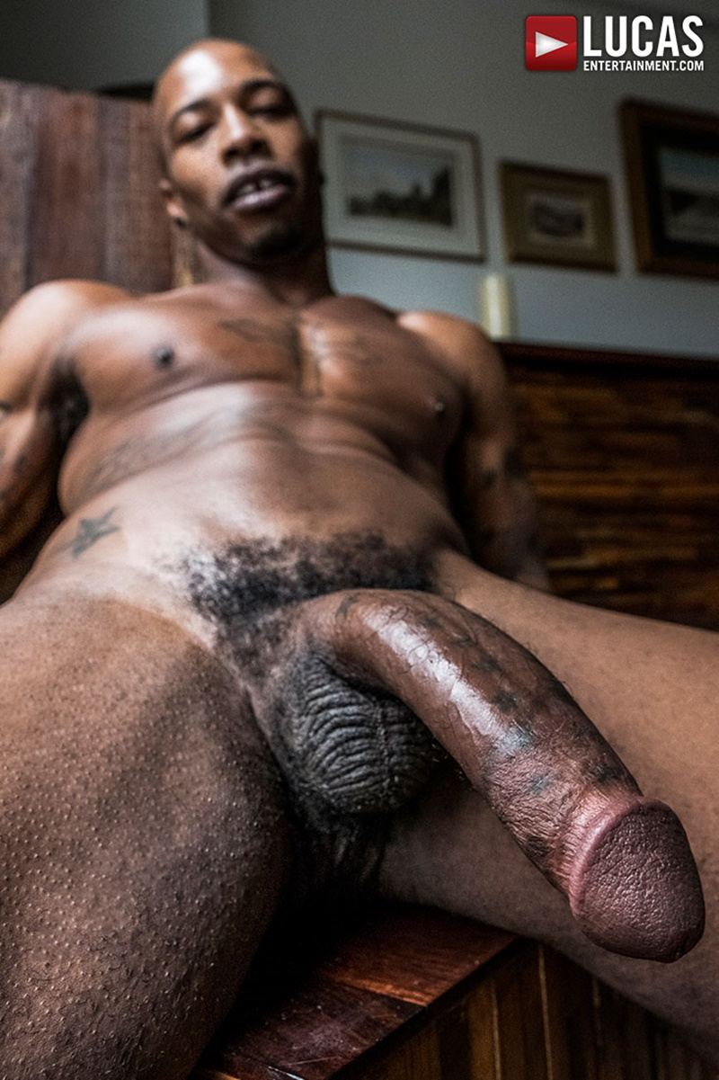 pictures-of-black-hairy-dick