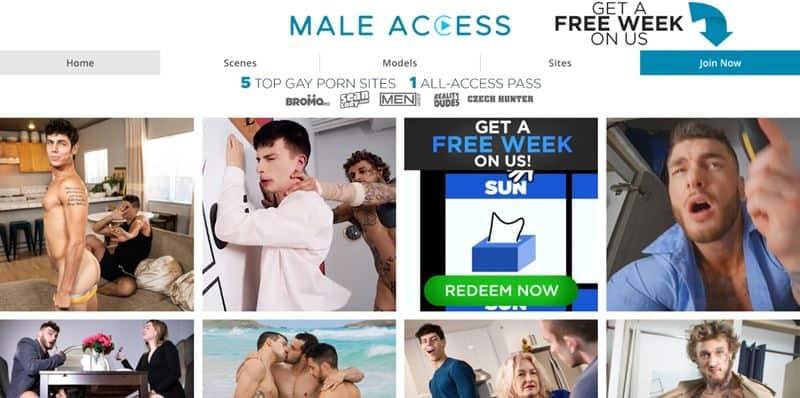 MaleAccess GayCest Sale Discount BlackFriday 001 gay porn pics - Holiday Discounts
